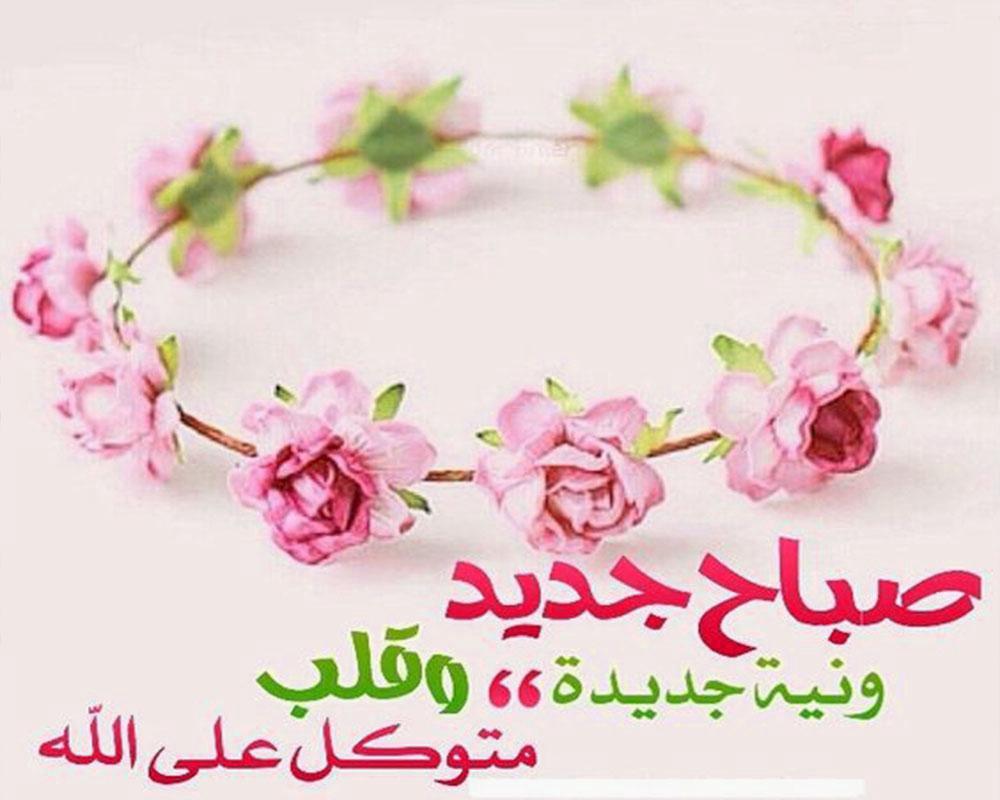 بالصور صباح الورد حبيبتي , اجمل الصور لصباح الخير والورد 6036 5