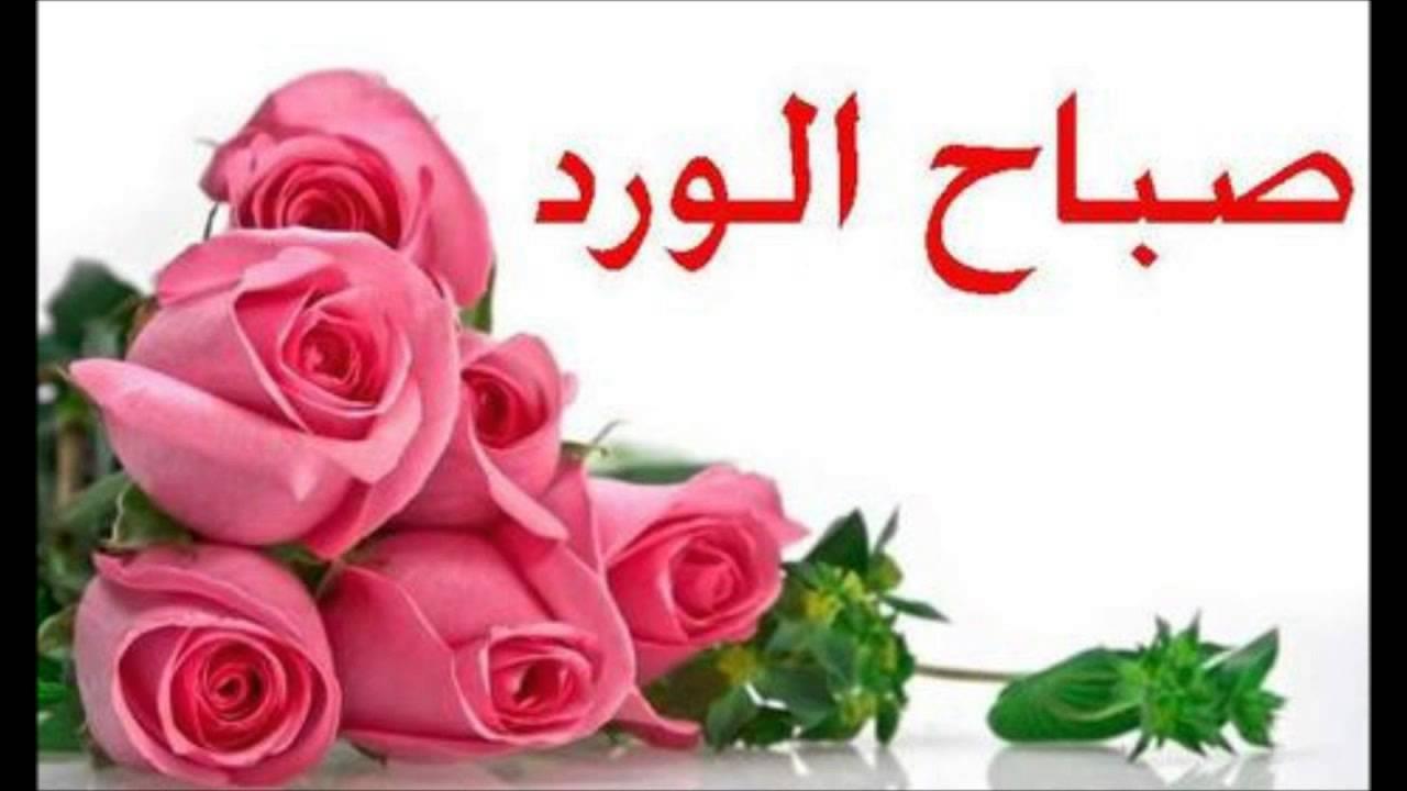 بالصور صباح الورد حبيبتي , اجمل الصور لصباح الخير والورد 6036 6