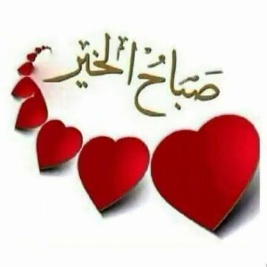 بالصور صباح الورد حبيبتي , اجمل الصور لصباح الخير والورد 6036 9