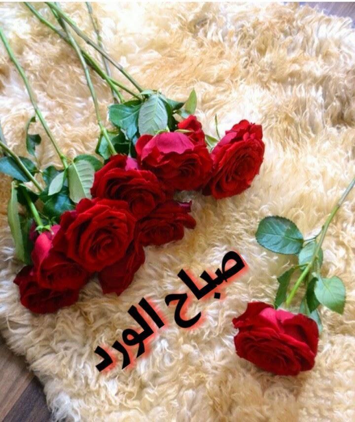 بالصور صباح الحب حبيبي , اجمل صباح الحب للحبيب 6069 5