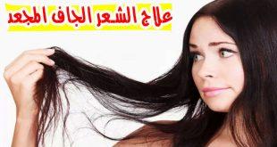 صوره علاج الشعر الجاف , طرق معالجه الشعر الجاف