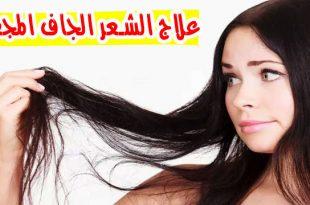 بالصور علاج الشعر الجاف , طرق معالجه الشعر الجاف 649 3 310x205