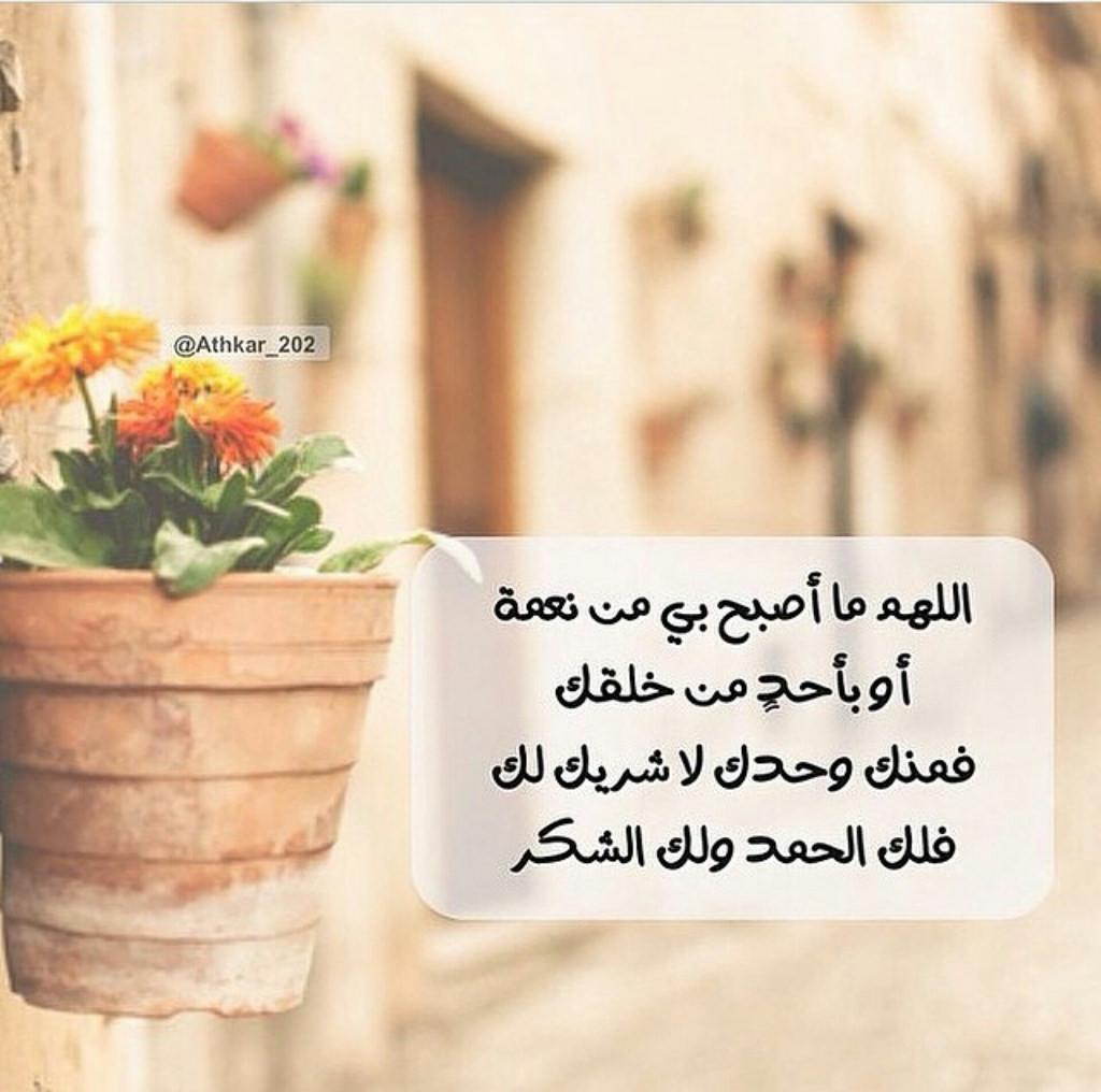 بالصور كلمات الصباح والتفاؤل , صباحكم تفاؤل وجمال 3561 5