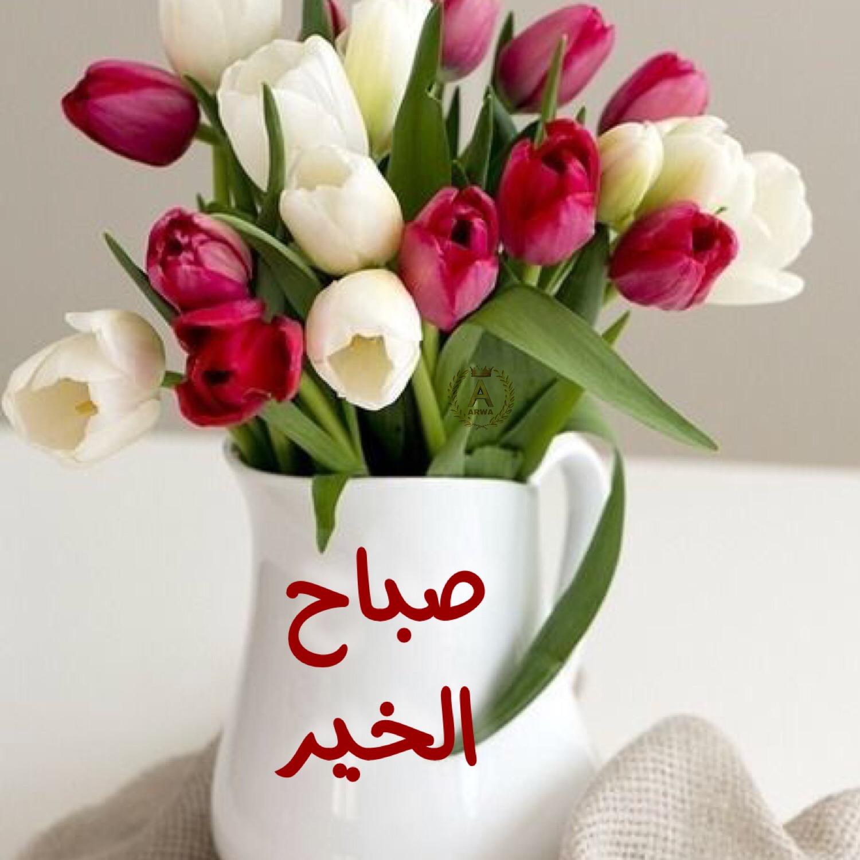 بالصور رسالة صباحية , اروع الرسائل الصباحية 3696 7