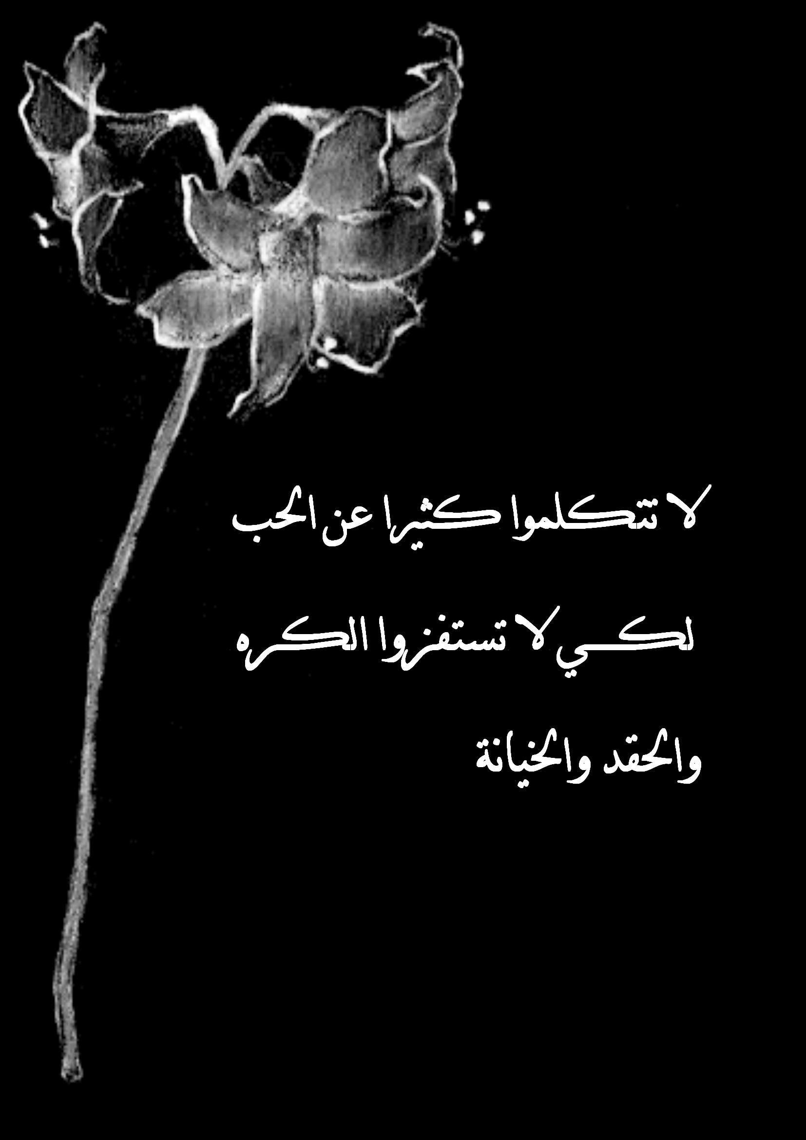 بالصور كلمات حلوه عن الحب , كلمات في الحب جميلة 3702 9