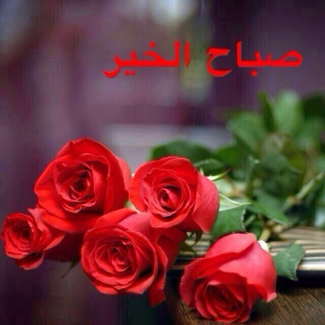 بالصور صباح الخير يا حبيبي , بدايه صباح للخير مع الحبيب 625 1