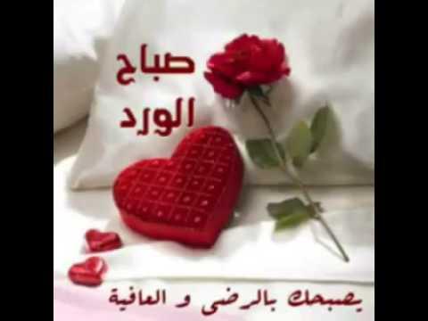 بالصور صباح الخير يا حبيبي , بدايه صباح للخير مع الحبيب 625 3