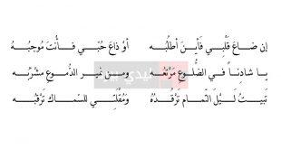 بالصور الشعر العربي الجاهلي , اشعار جاهلية قمة الروعة 12621 2 310x165
