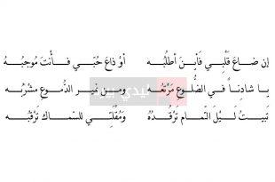 بالصور الشعر العربي الجاهلي , اشعار جاهلية قمة الروعة 12621 2 310x205