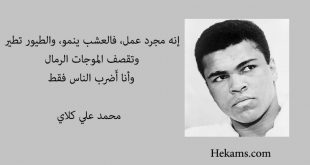 صورة اقوال محمد علي كلاي , الاسلام والامريكيين