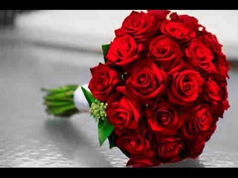 بالصور الورد الاحمر في الحلم , وردات تخطف العيون 13046