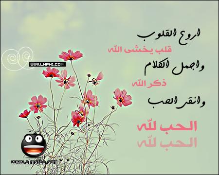 بالصور رسائل حب اسلامية , رسائل دينية معبرة جدا 13086
