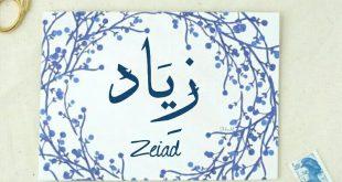 صورة اسماء بحرف ز , اسامي مميزة ونادرة