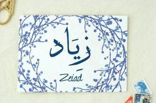 صور اسماء بحرف ز , اسامي مميزة ونادرة
