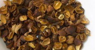 بالصور خلطة قشر القهوة , فوائد قشر القهوة للتخسيس 12818 2 310x165
