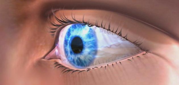 صور افضل علاج لجفاف العين , اسباب جفاف منطقة العيون