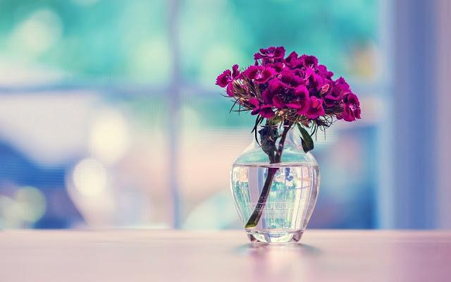 صورة خلفيات جميله , اجمل باقه من صور الشاشه