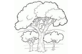 صور صورة شجرة للتلوين , دعك من التوتر واسترخي بتلوين صور الاشجار