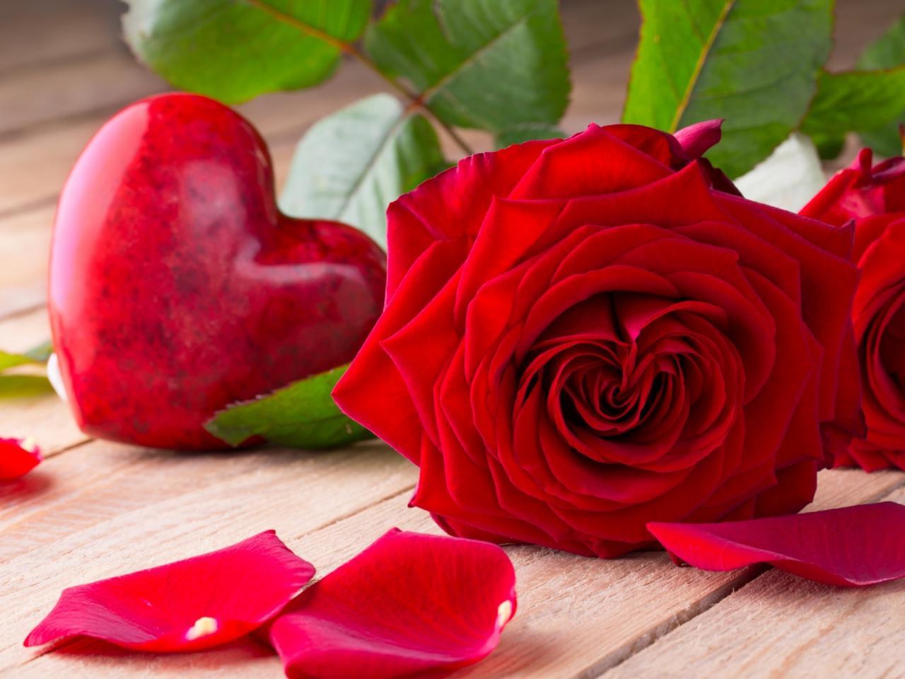 صورة اجمل صور الورد الاحمر , روعة الورد الاحمر وجماله
