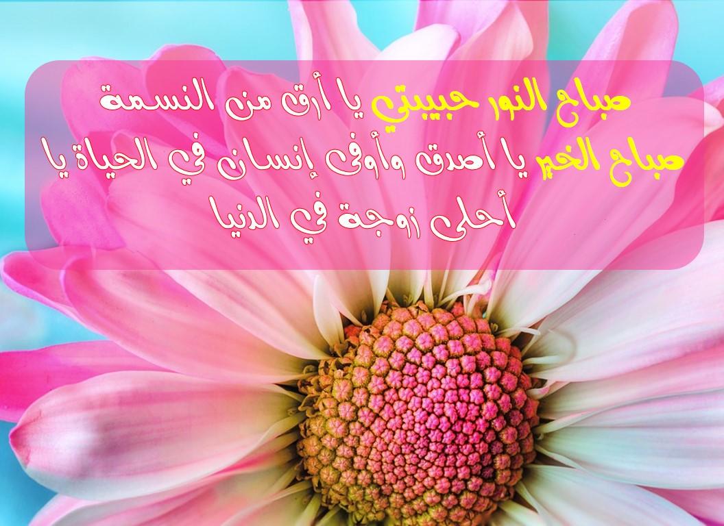 صباح النور حبيبتي بطاقات تحيه صباحيه للاحبه معنى الحب