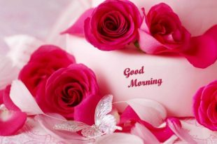 صورة صور صباح الخير رومانسيه , رمزيات صباحيه كلها حب