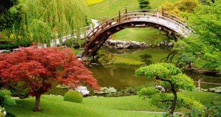 صور اروع الصور في العالم , اجمل الصور في العالم