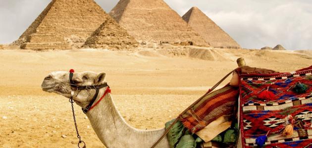 صور انواع السياحة , انماط السياحه بالعالم