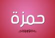صور معنى اسم حمزة , صفات ومعنى لحمزه