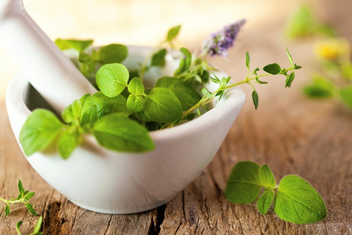 صورة علاج تساقط الشعر بالاعشاب , وصفات العشب الطبيعي لمنع فقدان الشعر
