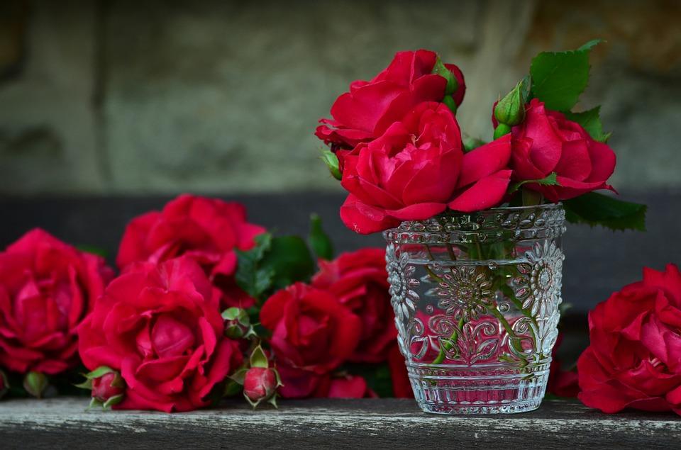 صورة صور عن الورد , من اجمل الهدايا