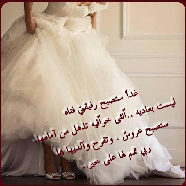 صور صور عن العروس , جمال وروعة العروس