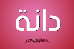 صورة معنى اسم دانه , شرح اسم دانه