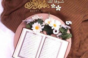 صورة صور رمضان جديده , صور شهر الكرم