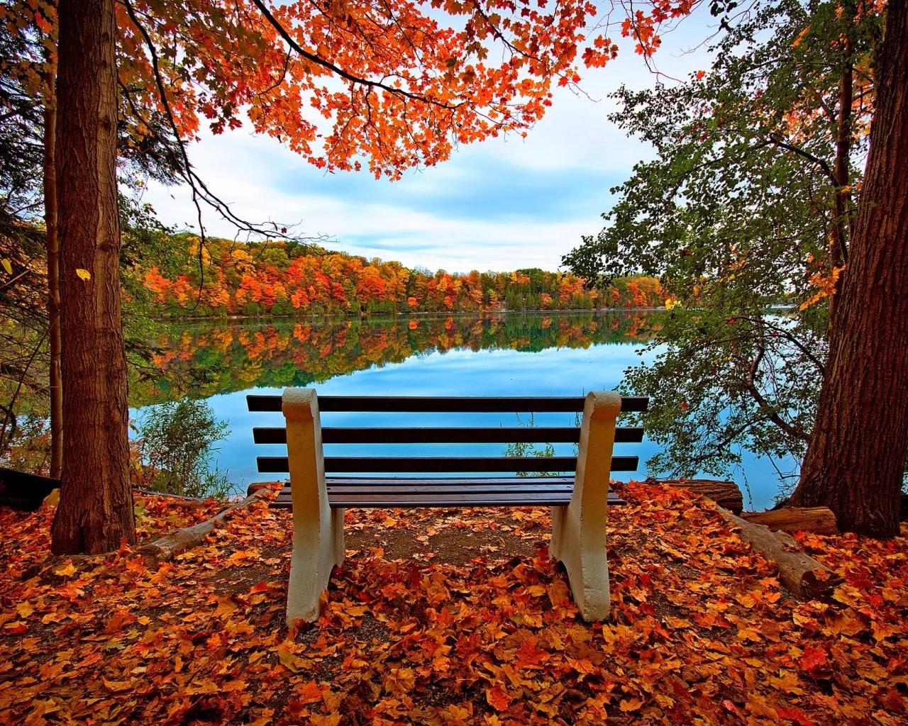 صورة صور طبيعية , صور جمال الطبيعة