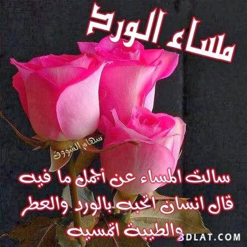 صورة رسائل مساء الخير حبيبي , اجمد مساء الخير حبيبي 6394 7